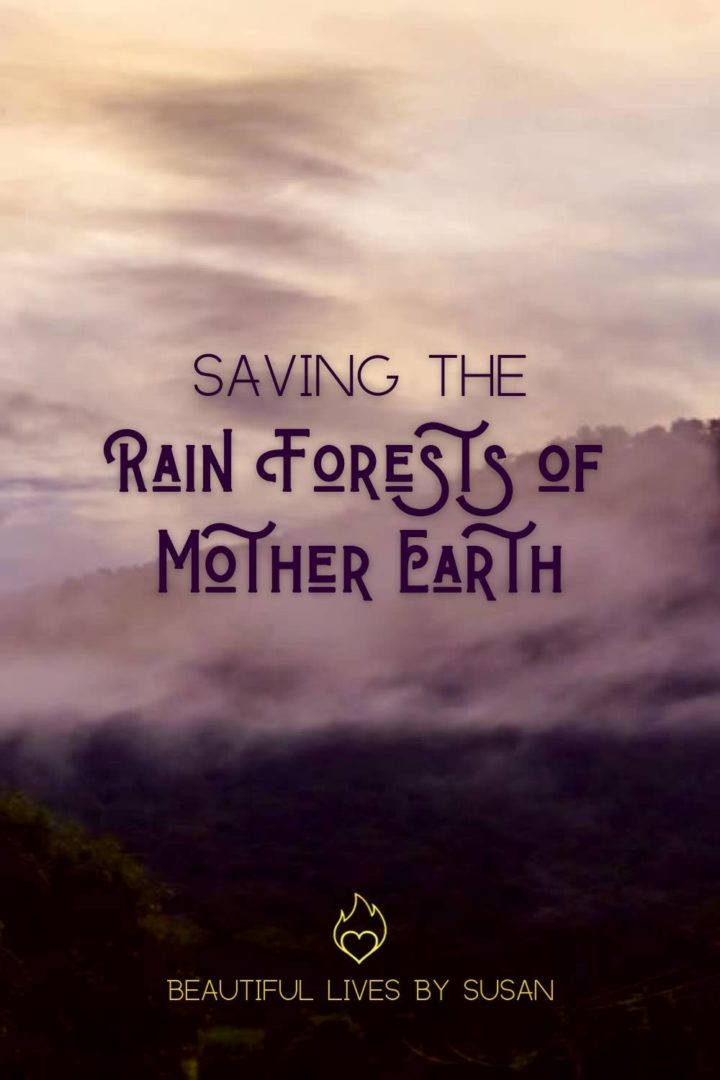 Saving the rain forests of mother earth