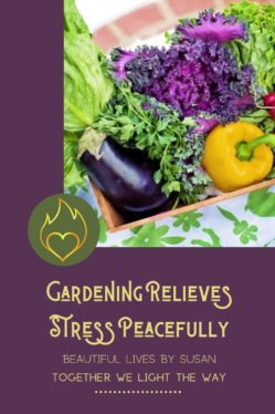 Gardening Relieves Stress Peacefully