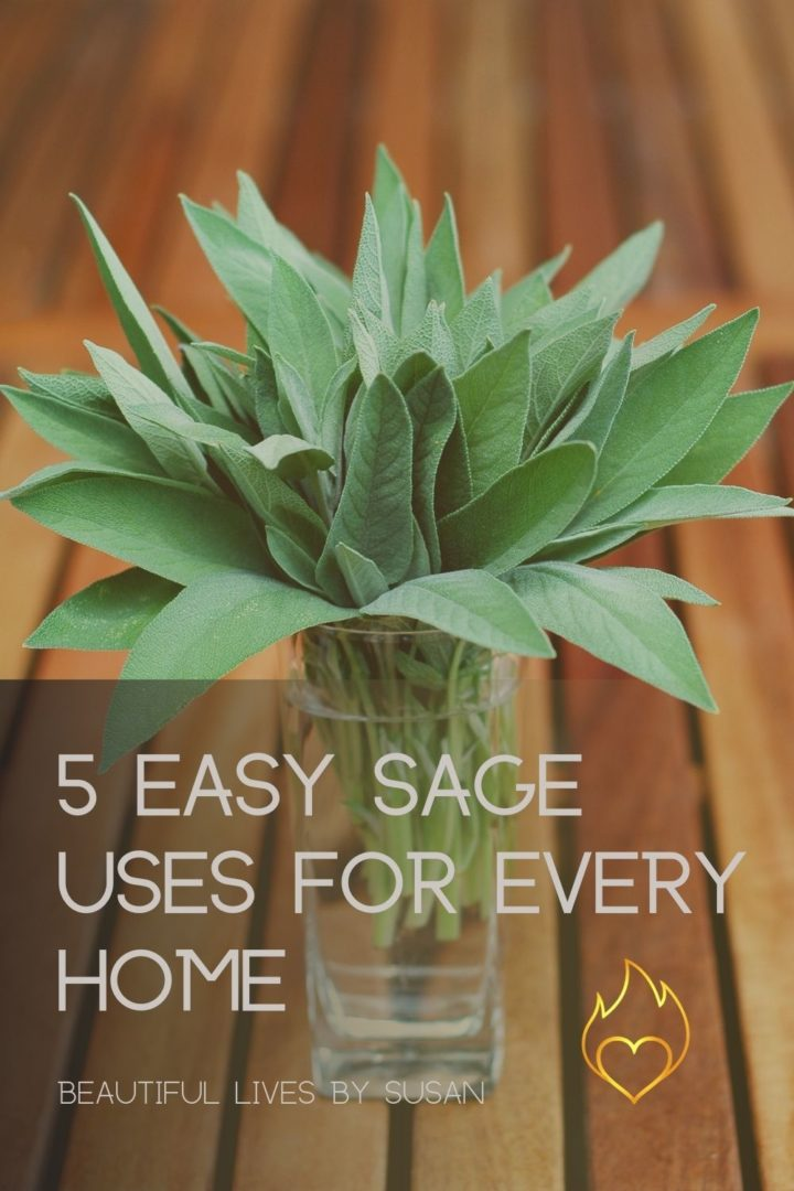5 easy sage uses for every home