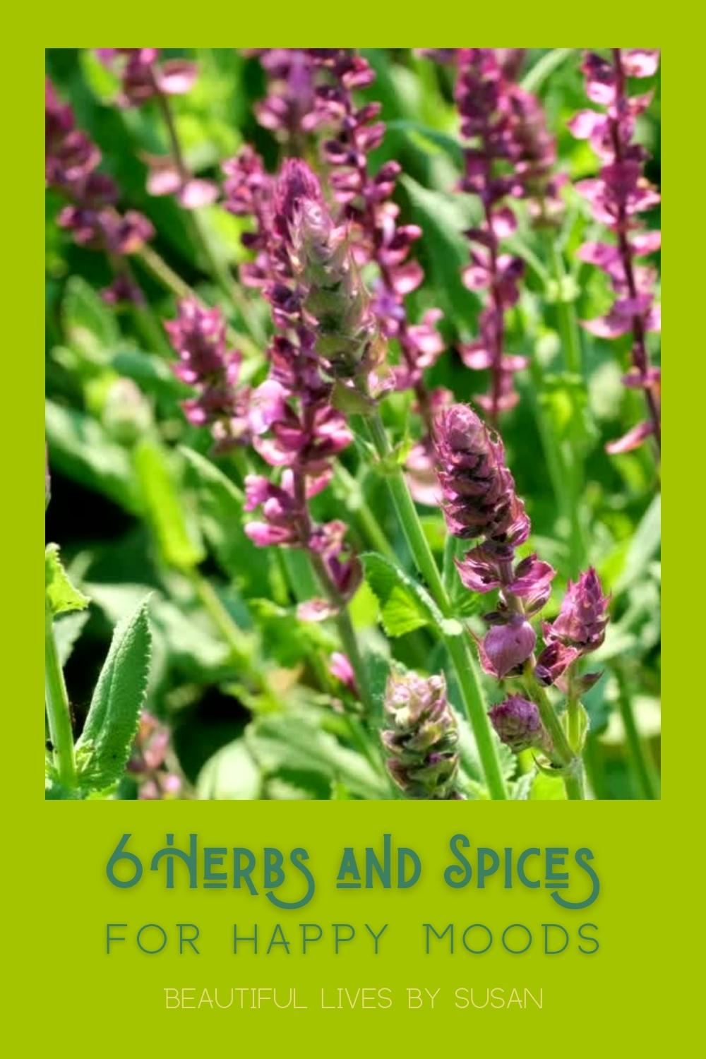 6 Herbs and Spices for Happy Moods
