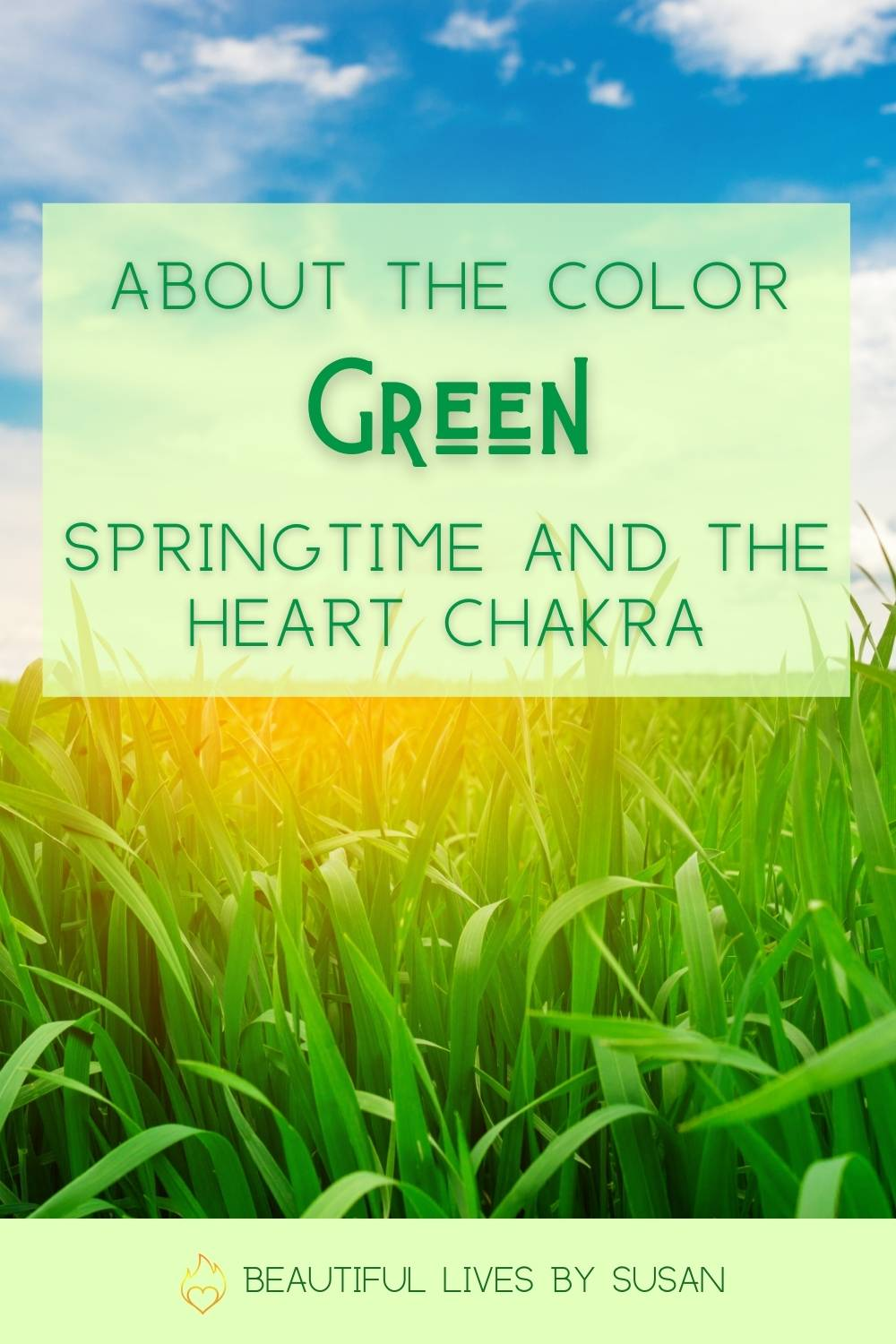 Green is the Symbolic Color of the Heart Chakra - fresh green grass growing in the Spring sun.