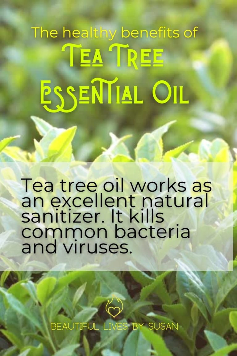 The Health and Beauty Benefits of Tea Tree Oil