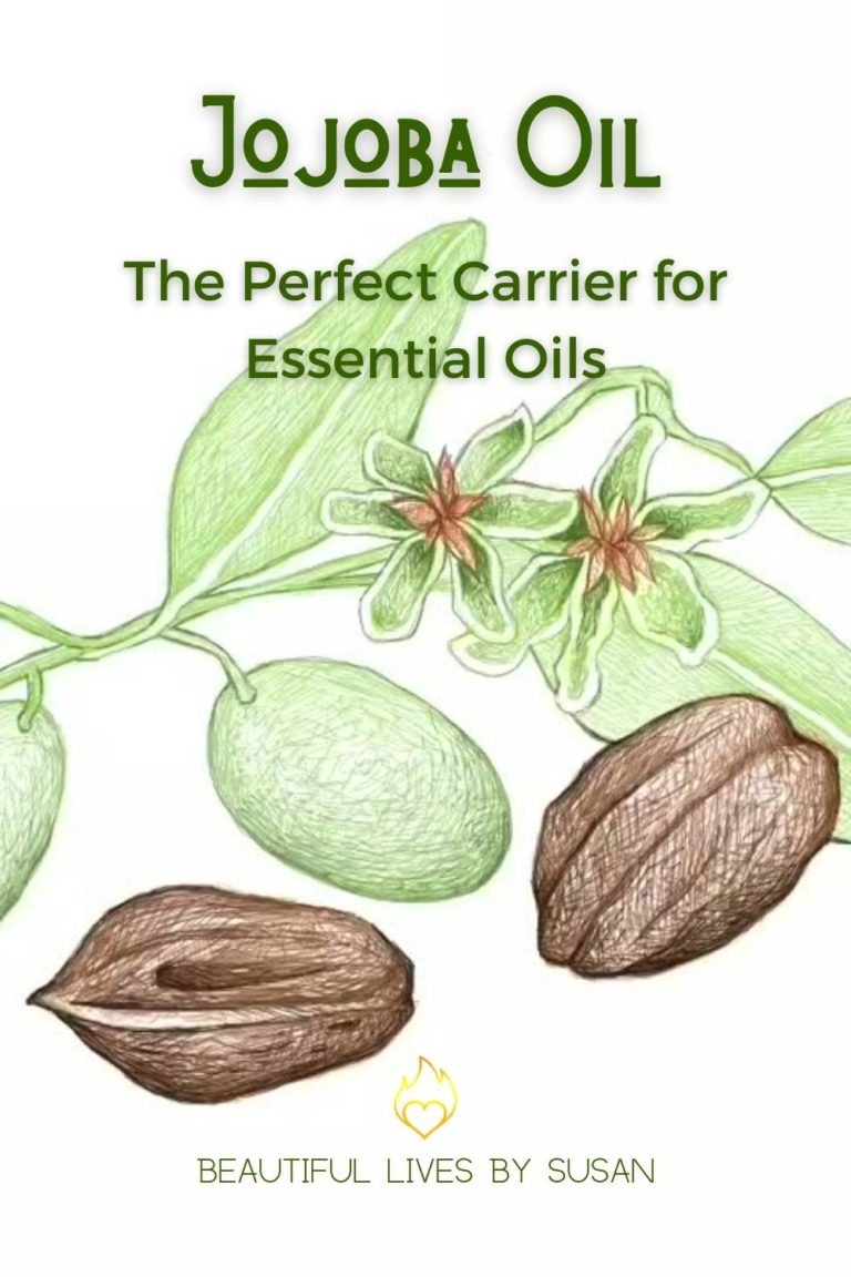 Jojoba Oil The Perfect Carrier for Essential OIls