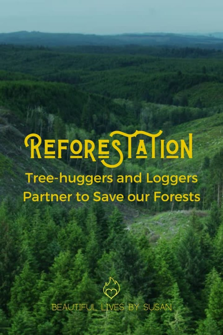 Reforestation Tree-huggers and Loggers Partner to Save our Forests - image of clear cutting in an Oregon forest.